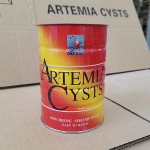 Artemia Cysts
