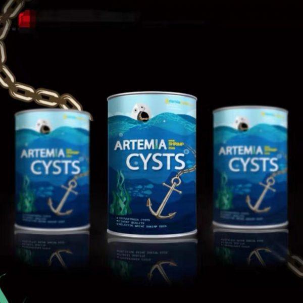 artemiacystsaaa